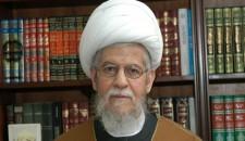الثورة الإسلامية في إيران حققت إنجازات لا مثيل لها