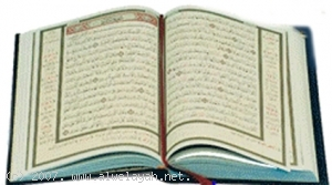 بُحوث قرآنية الشهيد في القُرآن