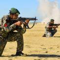 """بنداء """"يا سيد الشهداء!""""؛ الجيش الإيراني يبدأ المرحلة الرئيسية لمناورة """"ذو الفقار 99"""" الكبرى"""